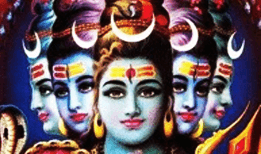 contact astrology lord shiva puja